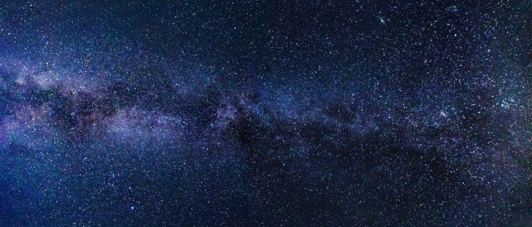 Stars of the Milky Way galaxy.