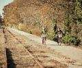 Mary Black Foundation Rail Trail