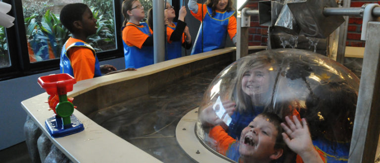 Children playing in the Reedy River Bend exhibit at the Children's Museum of the Upstate.