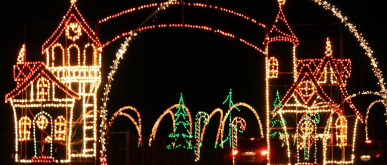 The entrance to Holiday Lights Safari Benefit at Hollywild.